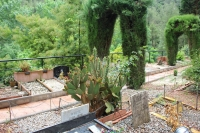 IMG_1712-cementerio-mascotas