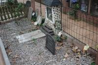 IMG_3524-cementerio-mascotas
