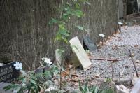 IMG_3525-cementerio-mascotas