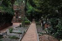 IMG_3530-cementerio-mascotas