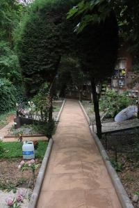 IMG_3533-cementerio-mascotas