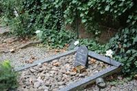 IMG_3542-cementerio-mascotas
