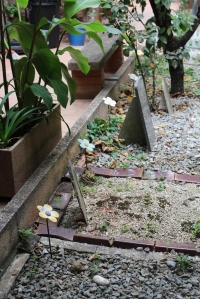 IMG_3543-cementerio-mascotas
