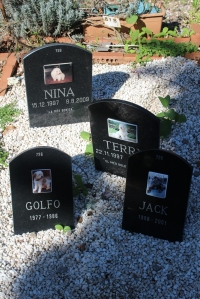 IMG_3614-cementerio-mascotas