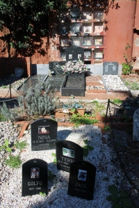 IMG_3615-cementerio-mascotas