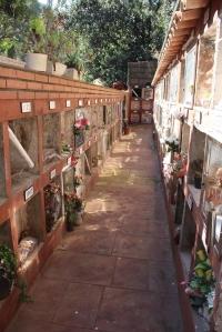 IMG_3624-cementerio-mascotas