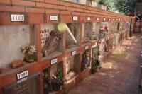 IMG_3625-cementerio-mascotas