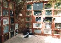 foto_28-cementerio-mascotas